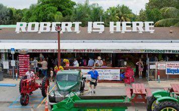 Florida utflykt: Robert is here