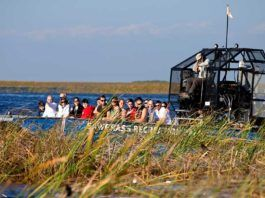 Airboats Everglades, everglades efter irma