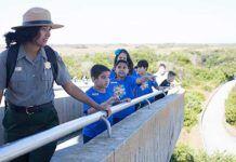 Everglades besökscentrum, everglades efter Irma