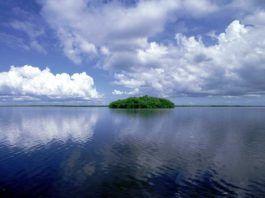 Ten Thousand Islands, Florida.
