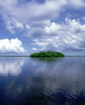 Ten Thousand Islands, Florida.