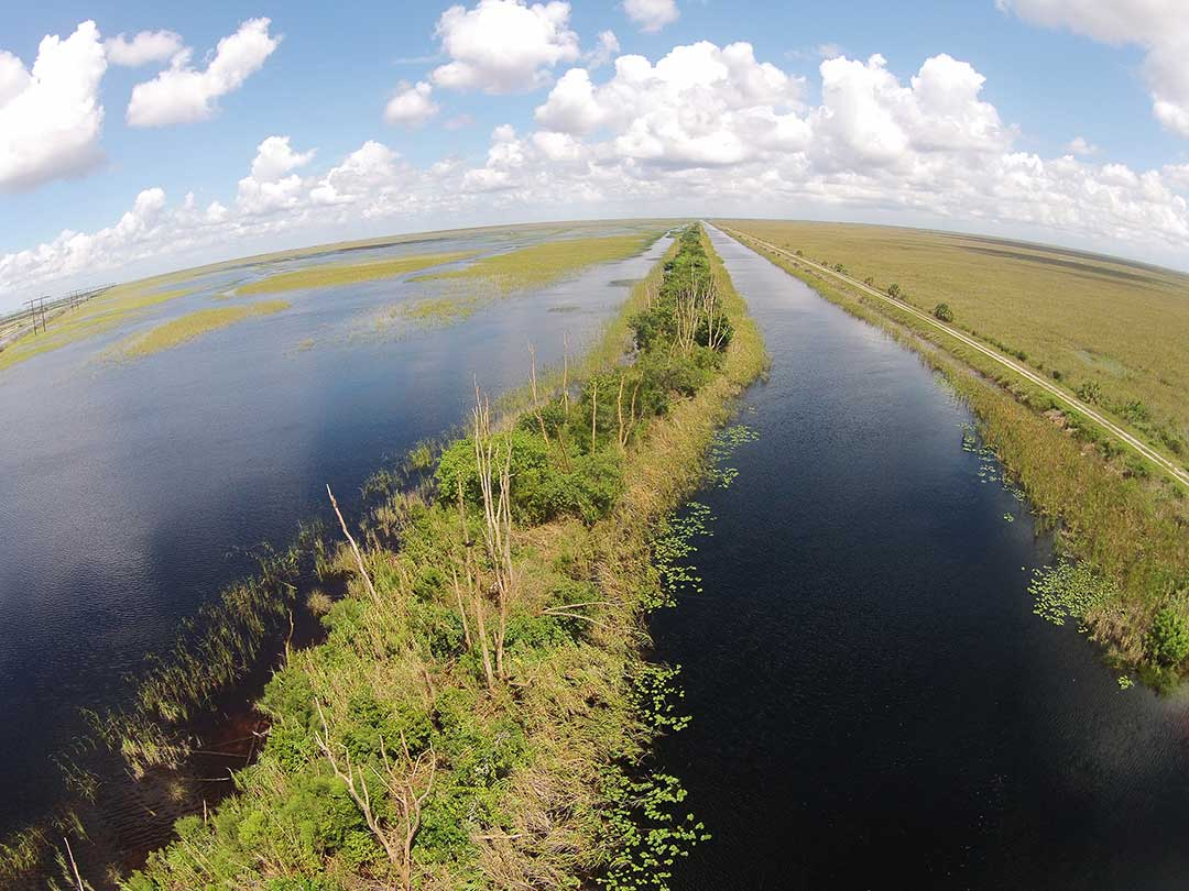 Everglades Florida. Everglades-området.