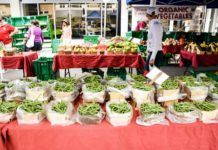 Farmers markets i Florida