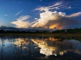 Everglades, Everglades-området