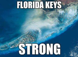 fake news om Irma