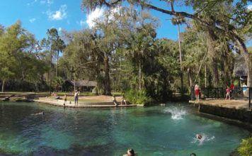 Florida stränder Orlando