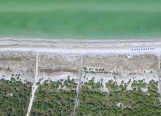 Floridas stränder västkusten, Floridas bästa stränder 2021