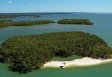 Everglades stränder