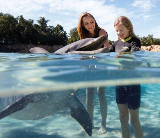 Discovery Cove, all-inclusive family adventure