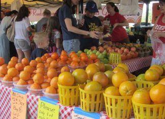 Farmers markets i Florida