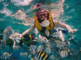 snorkling i florida